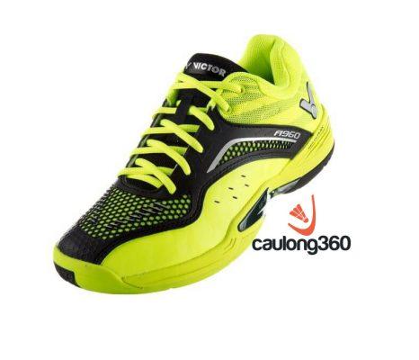 Giày cầu lông victor A960 GC - tổng thể