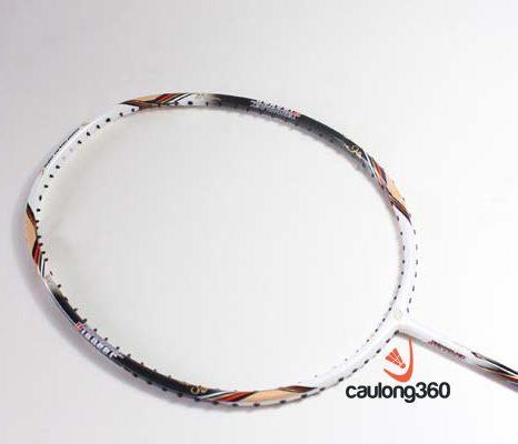 Vợt cầu lông sunbatta racket d&t 3600ii - tổng thể